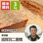 滋賀羽二重餅(田中農産) 3kg 平成28年 滋賀県産新米 近江米 もち米 - 道の駅草津