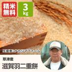 滋賀羽二重餅(ナカジマファーム) 3kg 令和元年 滋賀県産 近江米 もち米 - 道の駅草津