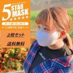 5スターマスク 洗えるマスク 普通サイズ サイズ調整 グレー ブラック 2枚入り ED-20122 送料無料