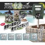 ソーラー式充電 アニマル撃退センサー 超音波式 イタチ 鳥 ネズミ 猫よけ 害獣対策