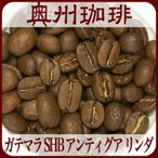 自家焙煎コーヒー豆ストレートコーヒー 【ガテマラ SHB アンティグア リンダ】200g