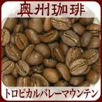 自家焙煎コーヒー豆ストレートコーヒー 【トロピカルバレーマウンテン】200g