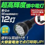 LED強力ハンドライト 18650充電池セット カブトムシ クワガタ 強力照射 夜釣り