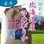令和元年産 特別栽培 北海道新すながわ ゆめぴりか 玄米 1kg