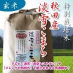 29年産 特別栽培米 秋田 淡雪こまち  【玄米】 5kg