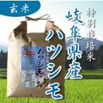 令和元年産 特別栽培米 岐阜県産 美濃ハツシモ  玄米 1kg