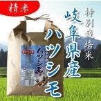令和元年産 特別栽培米 岐阜県産 美濃ハツシモ 精米 2kg