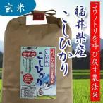 無農薬米 コウノトリ呼び戻す農法米 福井産コシヒカリ オーガニック 玄米 2kg