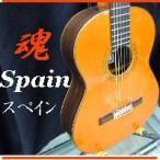 フラメンコギター スペイン レネ・アギレラ FCR110CR