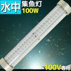 白色 LED水中 集魚灯 水中灯 100w 10000lm AC85v-305v プロ仕様 釣り イカ タチウオ マグロ 仕掛け 夜焚き
