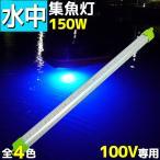 レビュー記載送料無料 LED 水中集魚灯100v 水中イルミネーション