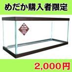 (メダカ購入者限定) メダカ水槽 萩物語 めだか スリム450Low (45x17x20cm)