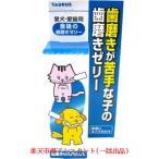トーラス食後の歯磨きゼリー30ml