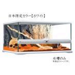 【キャシュレス5%還元対象】GEXPT2604グラステラリウム6030ホワイト 【日本限定カラー】