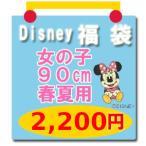 ディズニー子供服 Tシャツ ミニーマウスほか Disney(ディズニー) 福袋(女の子90cm 春夏用2)