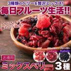 ミックスベリー 徳用 4種 500g