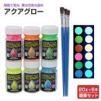 アクアグロー(水性夜光ペイント) 6色(20g×6本)+画筆セット(蛍光塗料/蓄光塗料/夜光塗料/シンロイヒ)