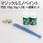 マジックルミノペイント 同色 100g(50g×2本)+画筆セット