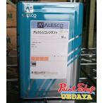 【送料無料】 アレス シリコンクラフト 16K  関西ペイント