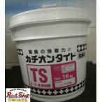 ショッピング原 【送料無料】 カチオンタイト TS  耐溶剤型 ローラー用 16K