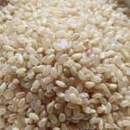 『雑穀』玄米(500g)■日本産 玄米 お米
