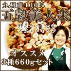 【送料無料】選べる!九州産100%五穀美人米3種220g×3袋 お得な計660g【4パターンから選べる】
