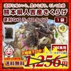 【濃厚な旨みと豊かな香り】熊本県人吉産きくらげ(20g)×1袋<スライスタイプ> グルメ お取り寄せ 送料無料 ポイント消化 お試し 食品 訳あり わけあり