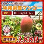 訳あり セール 沖縄でも絶大な人気! 沖縄産 マンゴー 約1.5kg(3〜6玉) お取り寄せ 送料無料 ポイント消化 食品