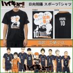 ハイキュー!! 日向翔陽 烏野高校 スポーツTシャツ X513-604 ブラック(黒)・C40 男女兼用 LLサイズ b03