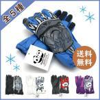 送料無料|全10種類  panda family キッズ ジュニア スキーグローブ スノー グローブ 手袋 防水 防風 すべり止め   チャック
