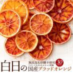 白日の国産ブラッドオレンジ 30g 無添加 砂糖不使用 国産 愛媛県産 ドライ フルーツ ブラッド オレンジ 柑橘 お試し 間食 スイーツ ヨーグルトバーク