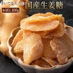 国産 生姜糖 きいてる大人の国産生姜糖 100g 高知県産 しょうが 生姜 ジンジャー 生姜チップ お試し ショウガ トッピング スイーツ おやつ 間食