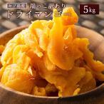 セブ島 ドライマンゴー 5kg(500g×10) 種周り 切り落とし 不揃い 半生 ドライフルーツ 肉厚 セブ島 フィリピン 訳あり ビタミン 大容量