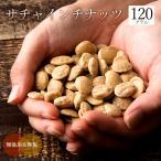 サチャインチナッツ 120g グリーンナッツ インカインチ ロースト 素焼き 無添加 スーパーフード ナッツ オメガ3脂肪酸 健康 美容 アンチエイジング