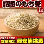 もち麦 1kg(500g×2)  驚きの食物繊維(β-グルカン) スーパーフード