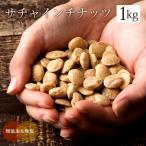 サチャインチナッツ 1kg (500g×2)  グリーンナッツ インカインチ ロースト 素焼き 無添加 スーパーフード ナッツ オメガ3脂肪酸 健康 美容 アンチエイジング