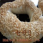 セサミベーグル 2個セット 天然酵母 国産小麦パン