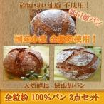 国産小麦 天然酵母 全粒粉 100% パン 3点セット