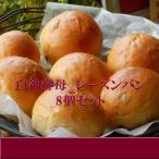 白神酵母 レーズン パン 8個セット