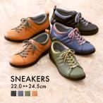 スニーカー レディース 靴 シューズ 3E 履きやすい 軽量 クッション 柔らか 歩きやすい 旅行 パンジー pansy PS1380