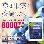 ブルーベリー葉エキス末EX粒 メール便 サプリメント 1000円ポッキリ