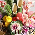 お正月の花 LLサイズ 門松 正月花 正月飾り 新年 年末 年始 迎春花 お正月飾り モダン 玄関