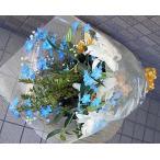 カサブランカ・バラ・デルフィニウムの花束 送料無料ギフトです!!