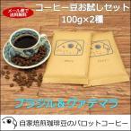 コーヒー豆 お試しセット(ブラジル&グァテマラ)