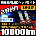 LEDヘッドライト フォグランプ H8/H11/H16/HB4/HB3/H10/H7/PSX26 10000ルーメン 1年保証 抜群の配光精度 美麗なカットライン 送料無料