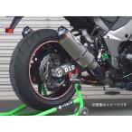 【お取寄せ】BEET Ninja1000(ニンジャ1000)/ABS '14〜用 NASSERT Evolution TypeII UP T2(アップ仕様) マフラー[クリアチタン] 0223-KC4-50