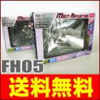 レイブリック シールドビーム マルチリフレクター ヘッドランプ(ヘッドライト) FH05 (角型/クリアタイプ) サニートラック用 2個セット