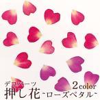 Yahoo!partsworldデコパーツ(31.押し花 ローズペタル) 花 ドライフラワー 薔薇 バラ 赤 レッド ピンク 紫