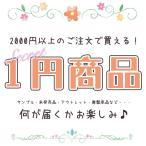 1円セール (メタルパーツ(10個) デコパーツ(5g)) 選べる6種類 限定キャンペーン お買い得