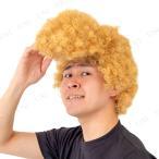 ミラクルリーゼント (ゴールド) パーティーグッズ 仮装 変装グッズ かつら ウィッグ 髪 ハロウィン メンズ 男性 ヤンキー 不良